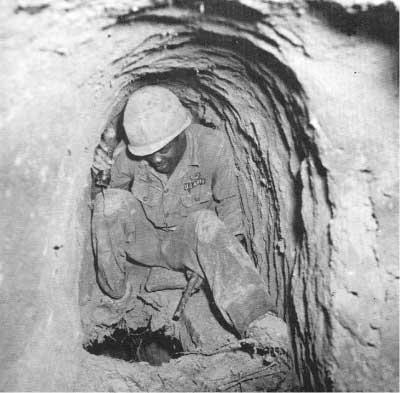 tunnel-rat-5