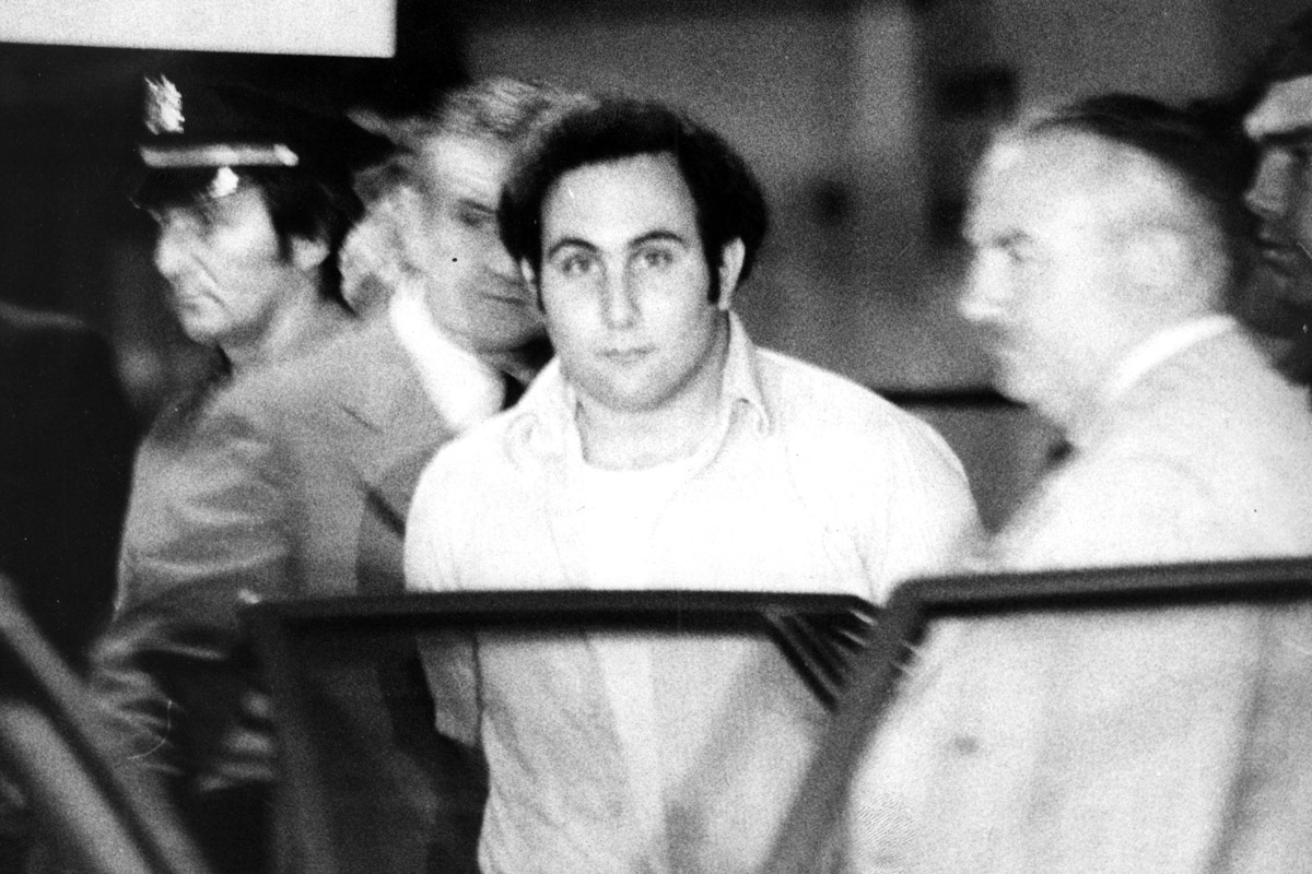 A wide eyed David berkowitz (The Son Of Sam) looks at our photographer as he's being taken into custody on Aug 11, 1977.