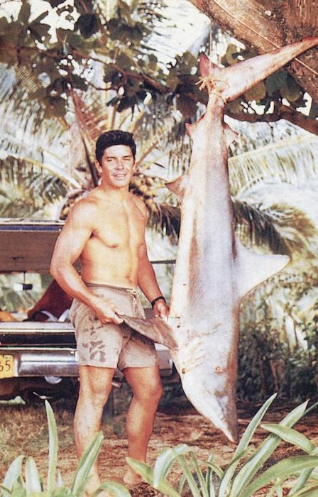 Jose_Angel_shark