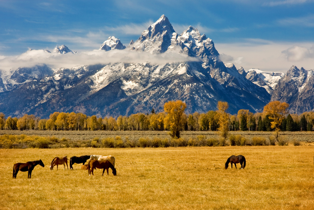 human history of the grand teton essay We celebrate rivalries because they push our human race to its limits,  the 6 greatest mountaineering rivalries  grand teton north face.