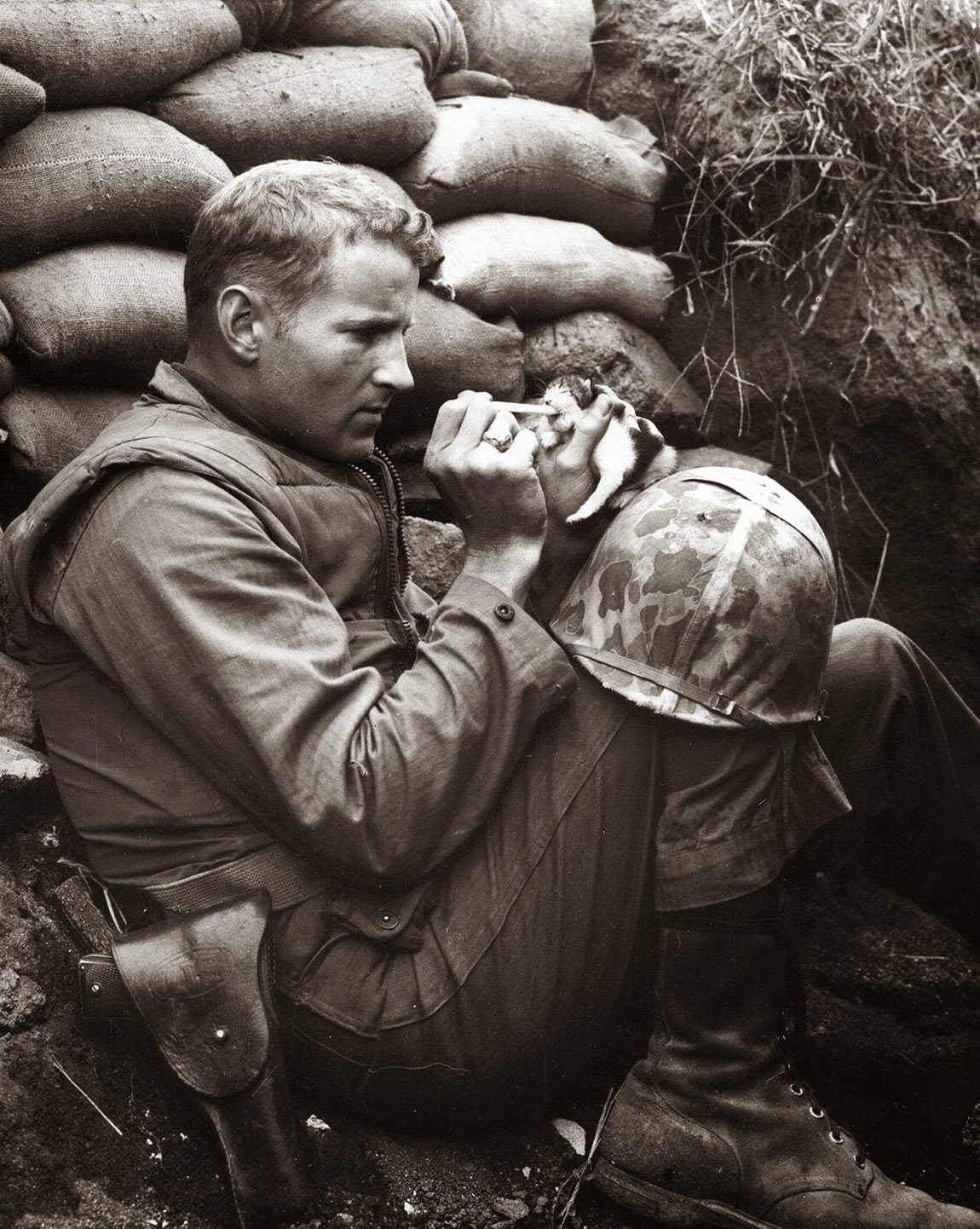 The marine and the kitten, Korean War, 1952 (1)