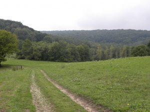 Hill near the rail-line where York earned his medal. PHOTO: wikimedia
