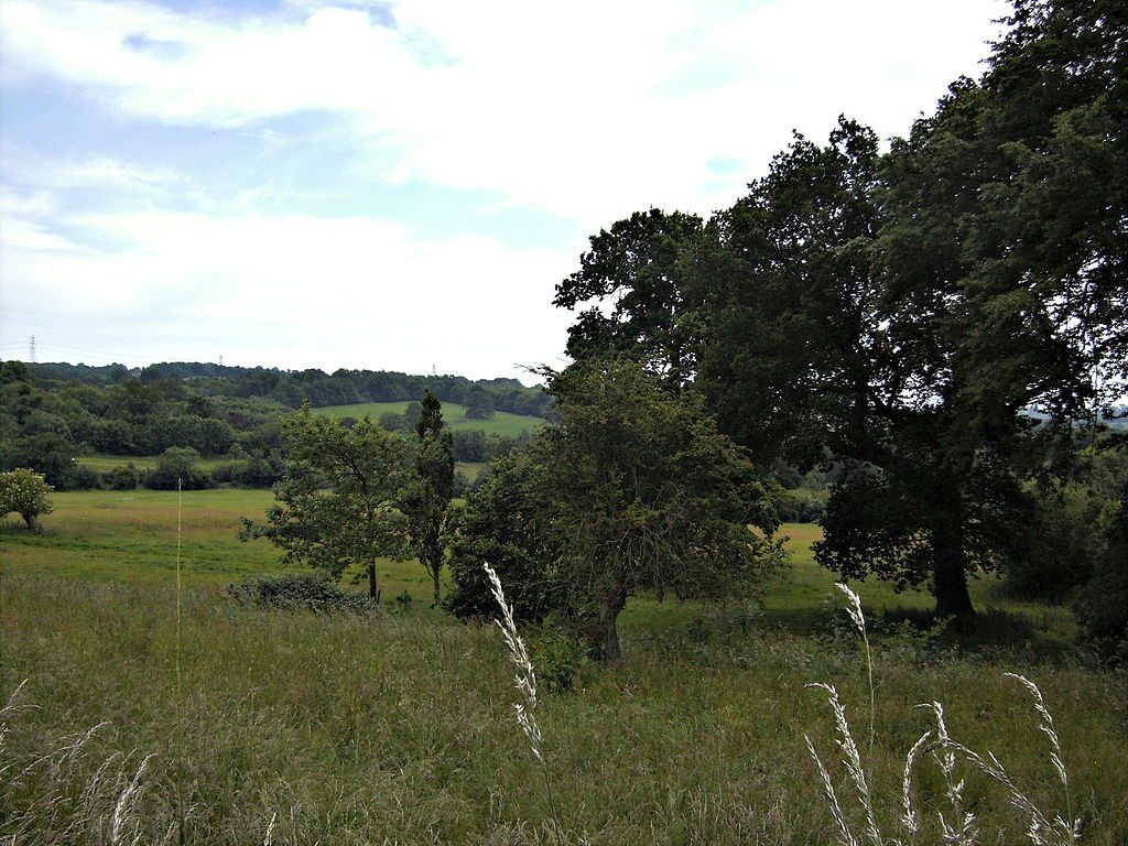 The battlefield of Hastings [PHOTO: wikimedia]