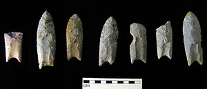 Clovis Point tools, found in Iowa. [PHOTO: wikimedia]