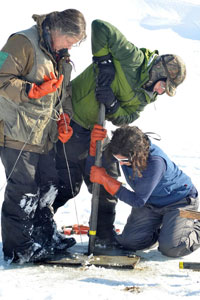 Paleontologists taking core samples at St. Paul Island [PHOTO: westerndigs.org]