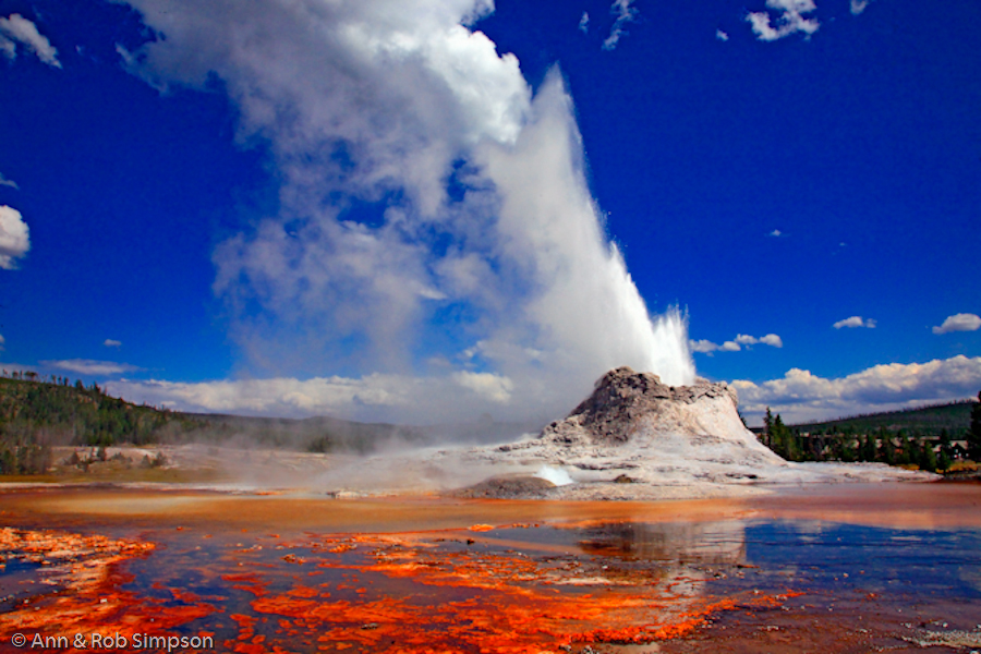 Castle Geyser erupting Photo: kwizoo