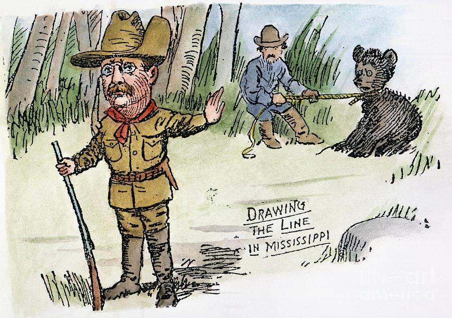A cartoon created during Roosevelt's presidency about the bear hunt [PHOTO: fineartamerica]