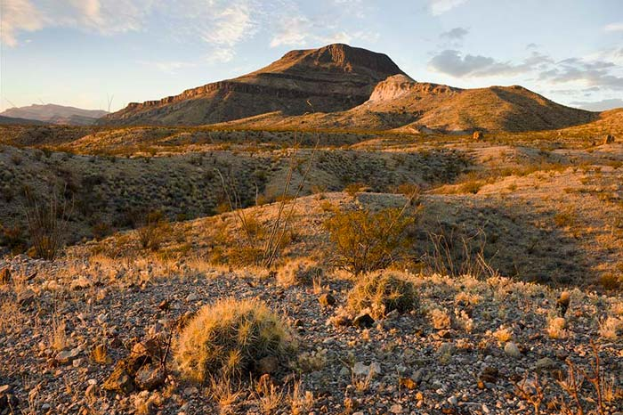 Part of the Chihuahuan Desert in Mexico, where the prints were found. [PHOTO: apogeephoto.com]