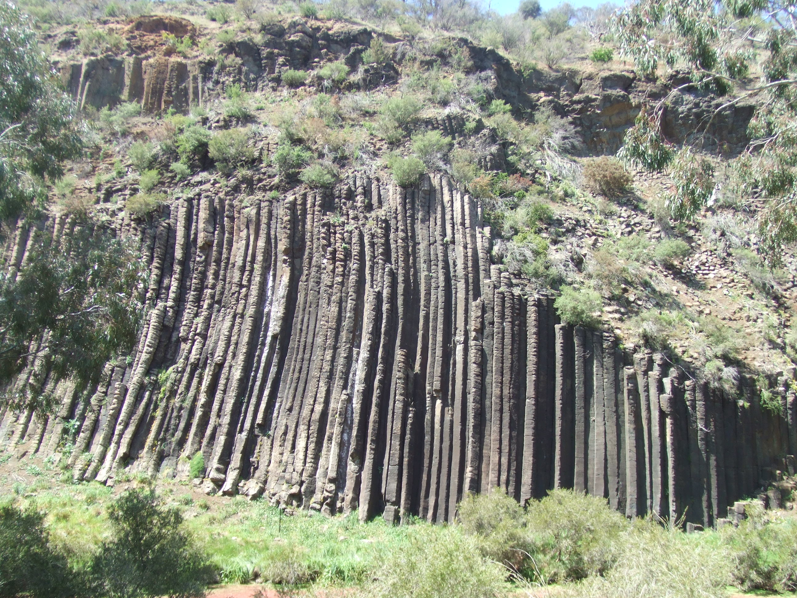(Organ Pipes National Park | en.wikipedia.org)
