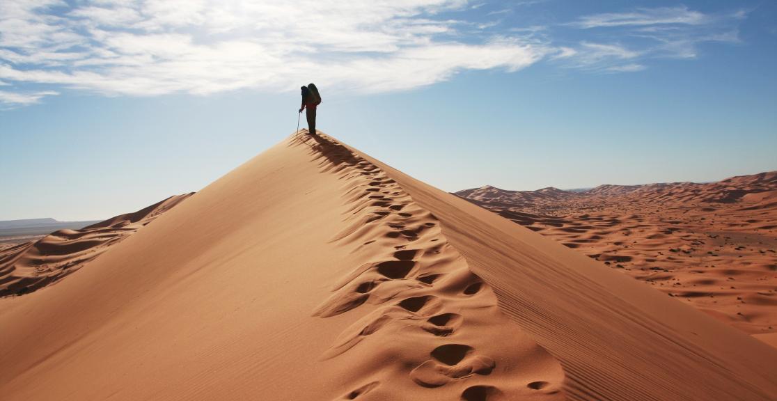 The Human Imprint on the Shifting Sahara Desert